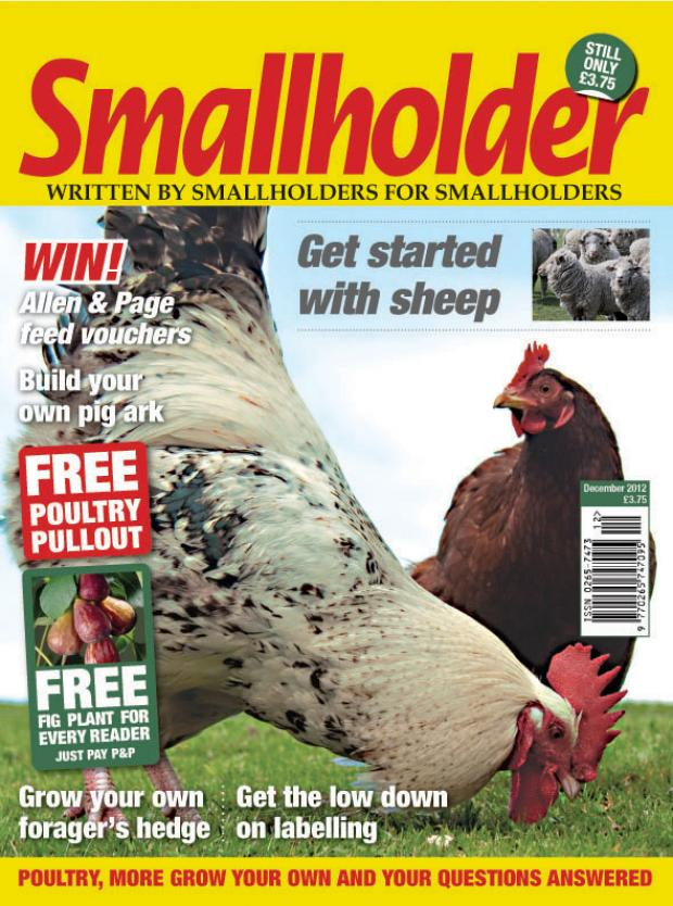 December issue of Smallholder out now!