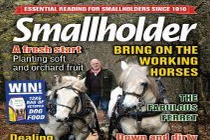 October's Smallholder is out now! 