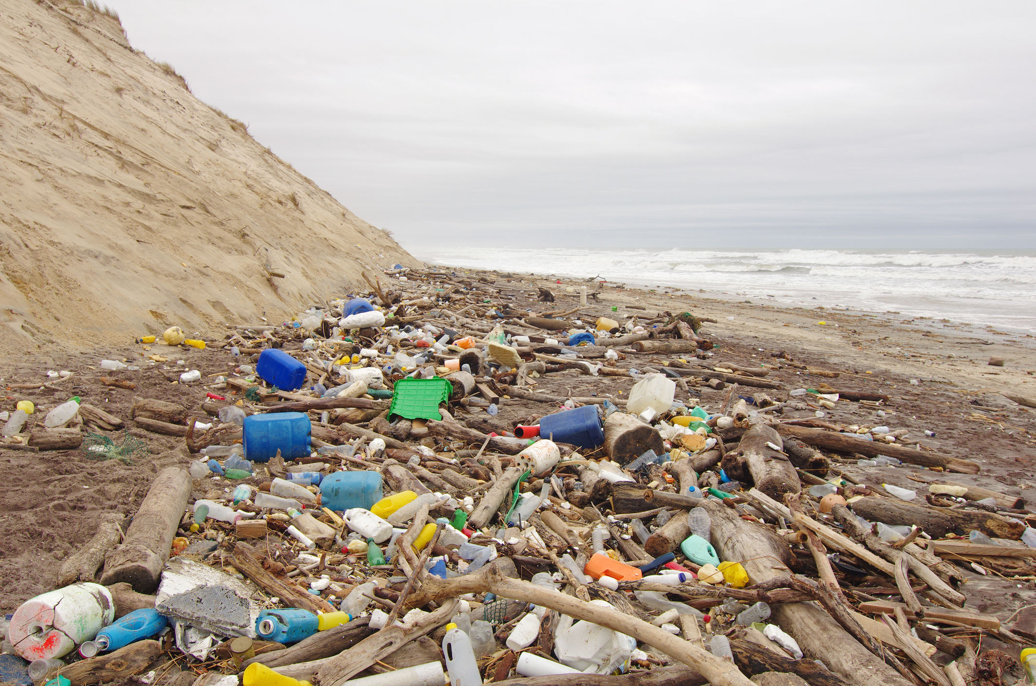 Government launches microplastics research to protect oceans