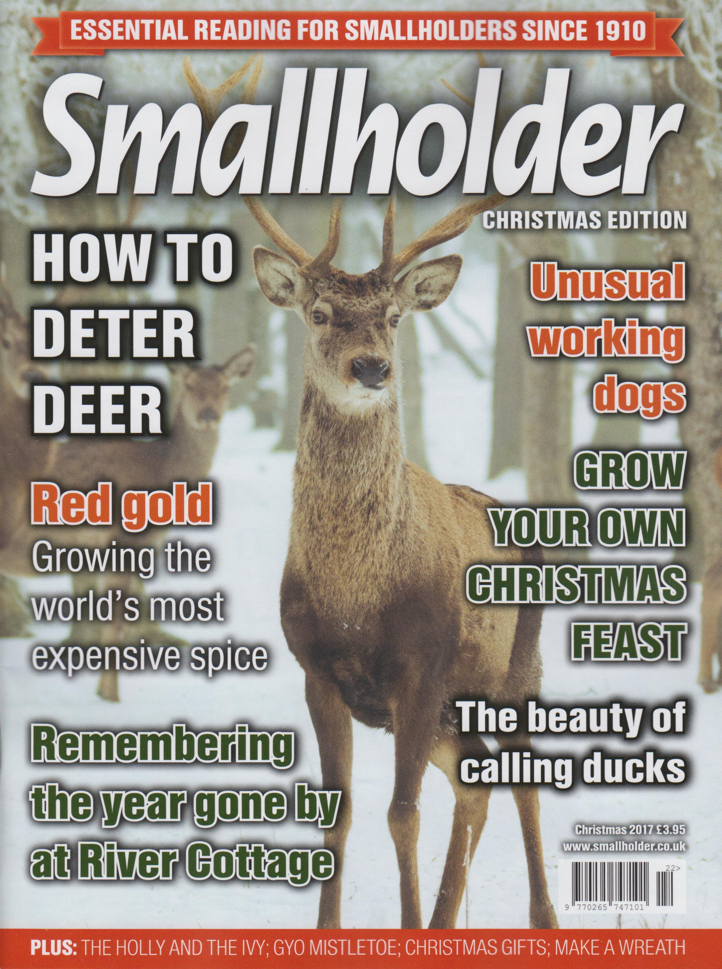 The Christmas edition of Smallholder magazine is positively fizzing with festive spirit
