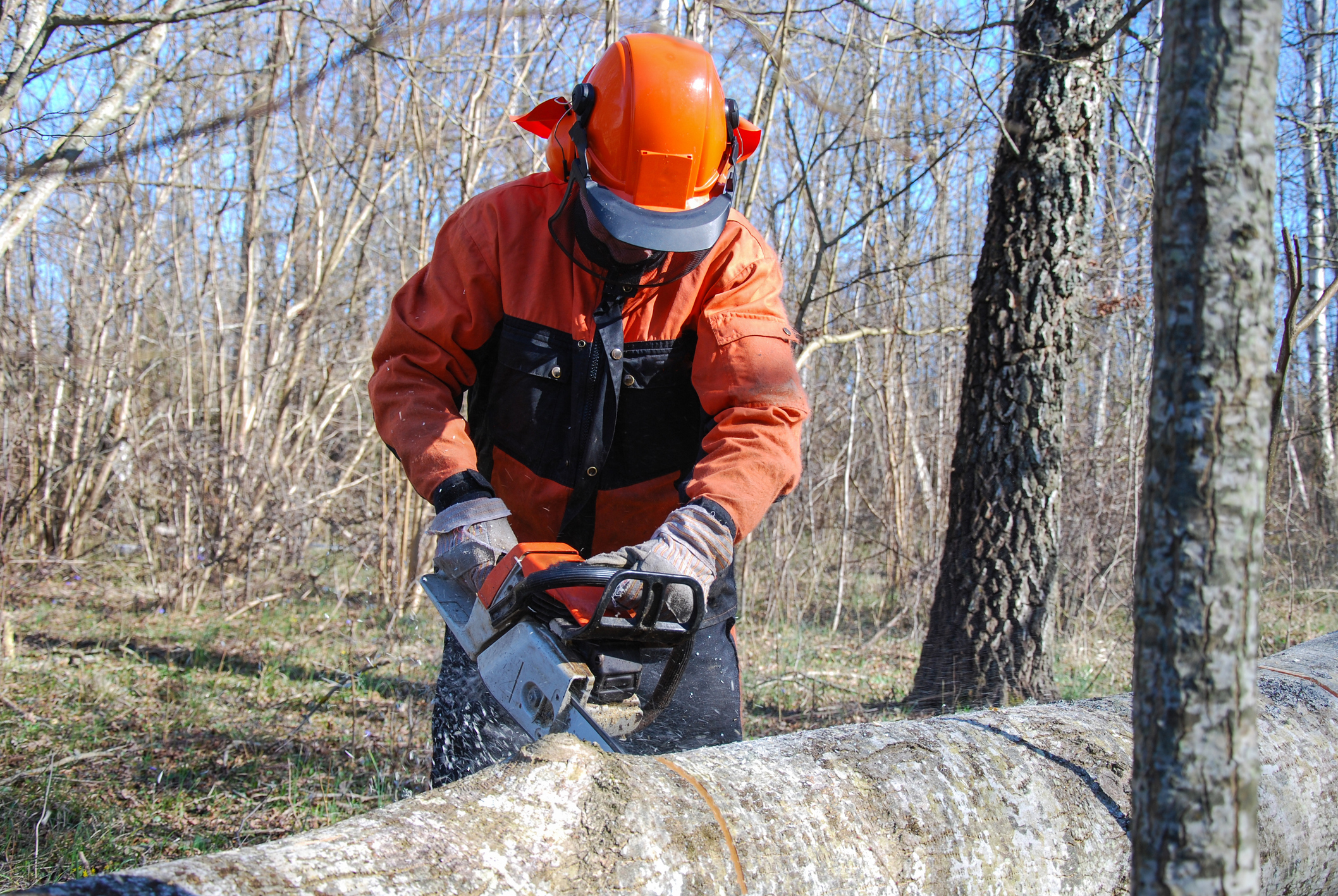 Wear the right safety kit when using a chainsaw