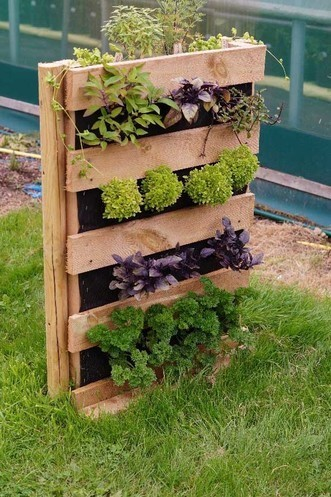 Jekka McVicar makes vertical herb planting easy in small spaces