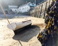 Seaweed Festival in aid of the N.D. Hospice