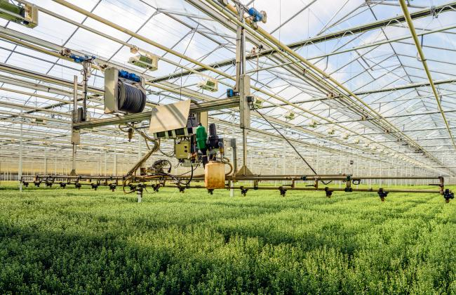 Government offers £90m for food producers to use robotics, AI and data science