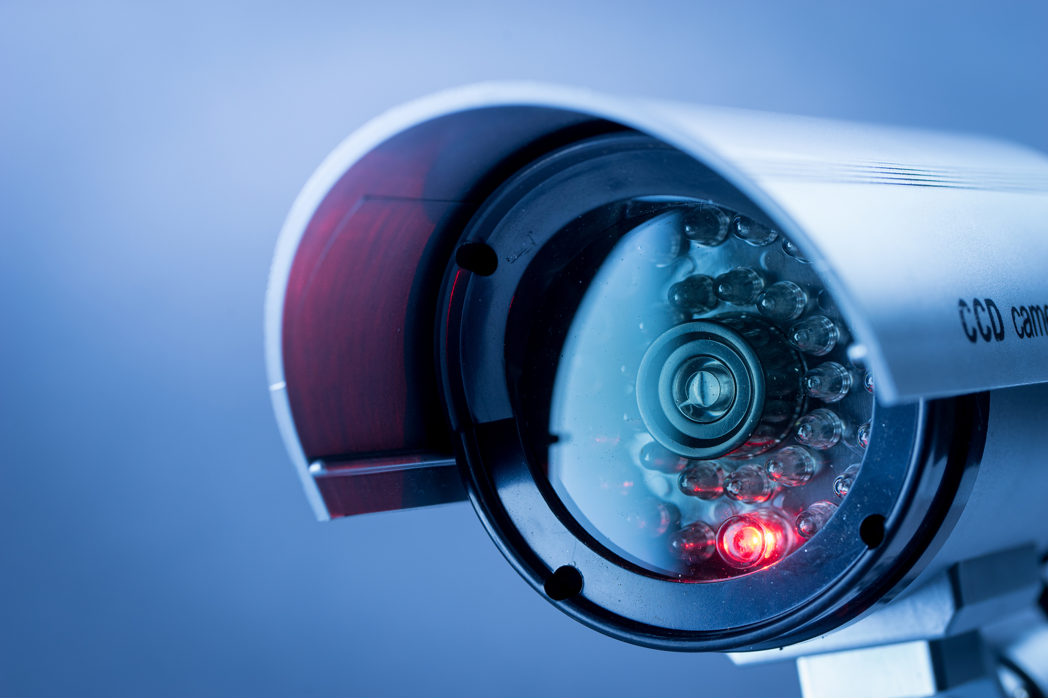 CCTV now mandatory in all abattoirs in England