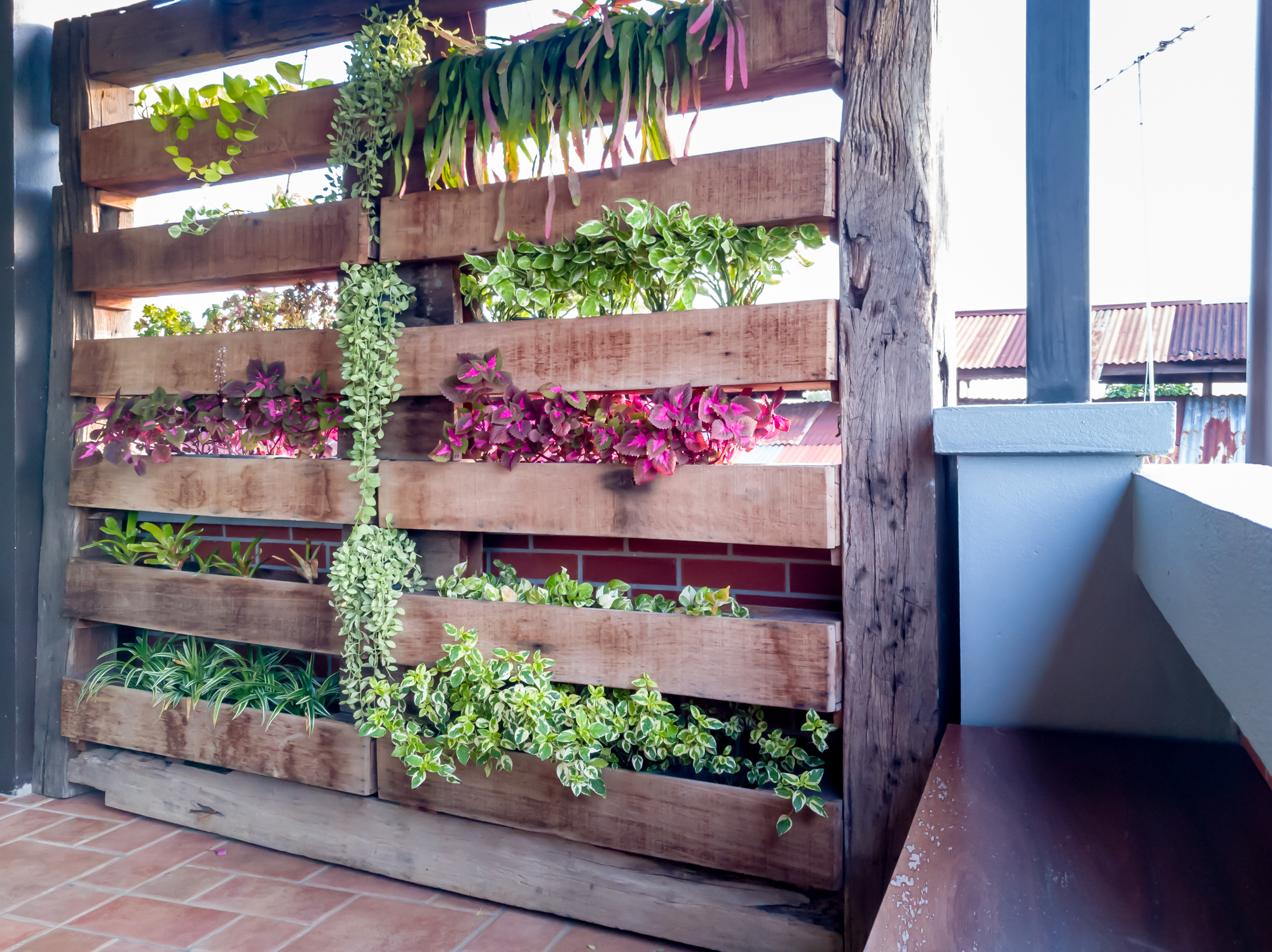 Vertical gardening is practical and attractive