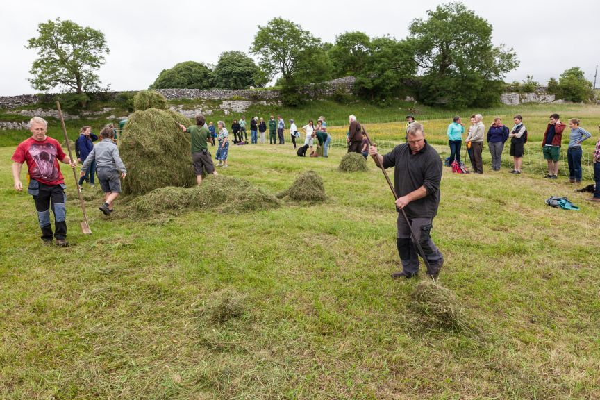 Meadowlands Festival, a weekend of celebration of upland hay meadows in the Yorkshire Dales