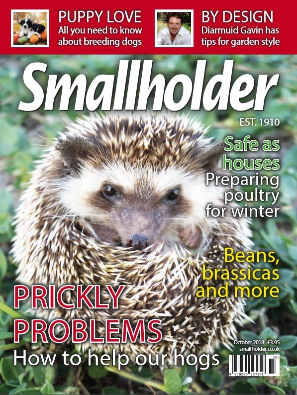 The October issue of Smallholder magazine is out now