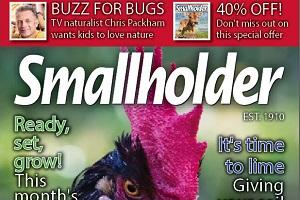 The November issue of Smallholder magazine is out now!