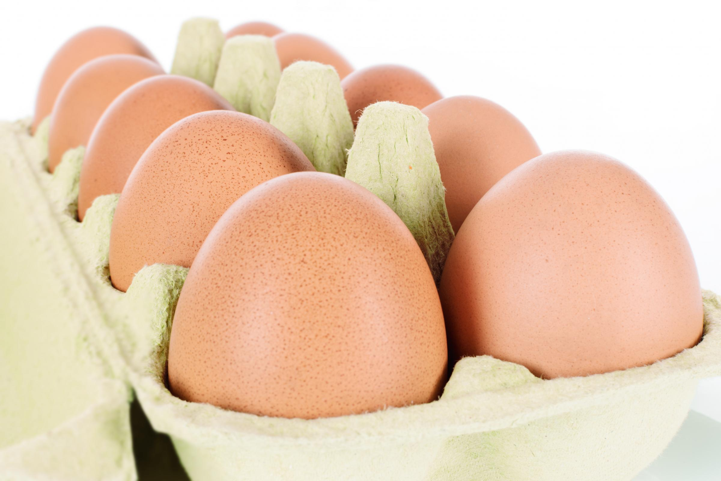 Medium eggs are as nutritional as larger sized eggs