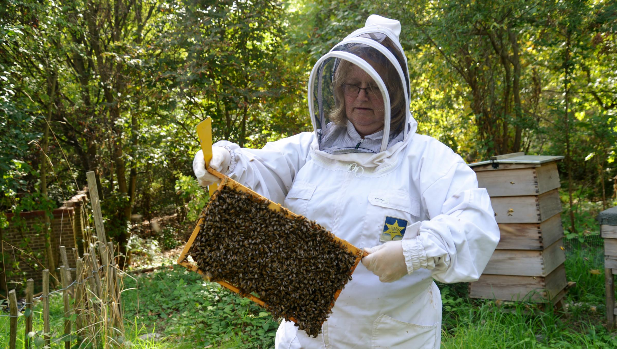 Beekeepers are not buzzing about no-deal