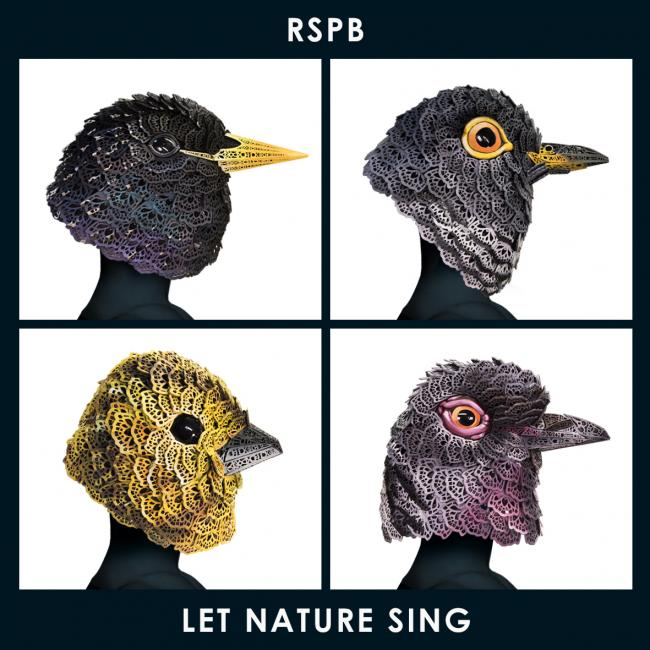 The pop single is a collaboration between the RSPB, folk singer Sam Lee and Bill Barclay, music director of The Globe